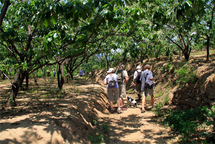 , Beijing Hikers Zhangdaokou, June 12, 2011